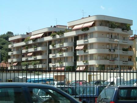 bronzino 2004
